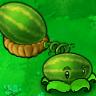 melon pult